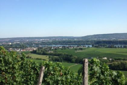 Wiesbaden, _c_schimpfmalmama