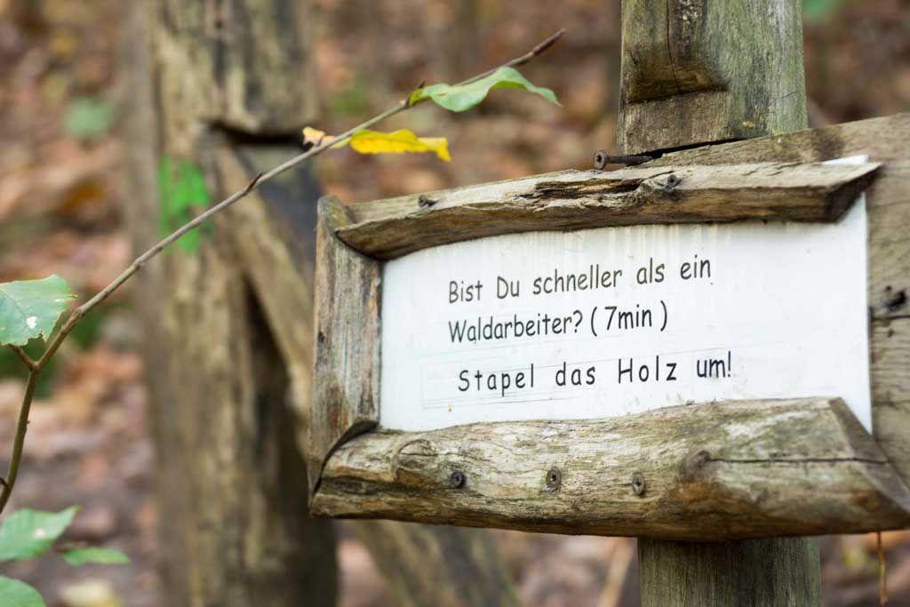 www.reisezoom.com